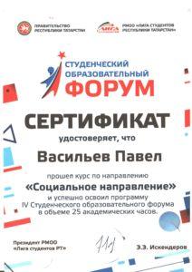 Сертификат СОФ 2017 Васильев П 2 смена